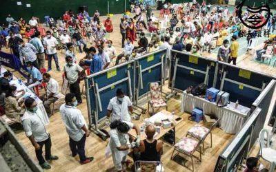 單日31萬例 印度疫情如海嘯反撲